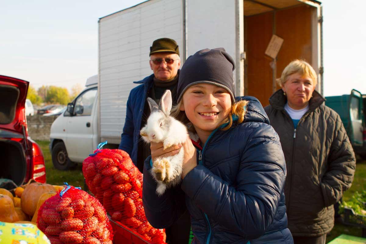 MarkttagKiskumajsa11