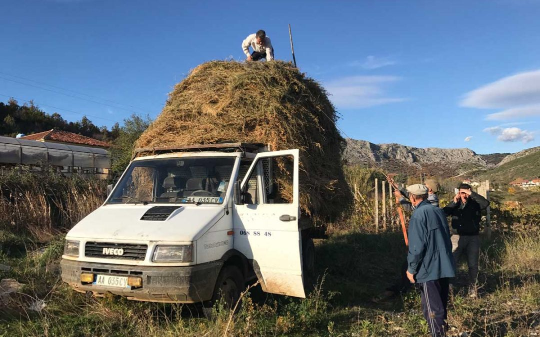 Unser Trip durch Albanien