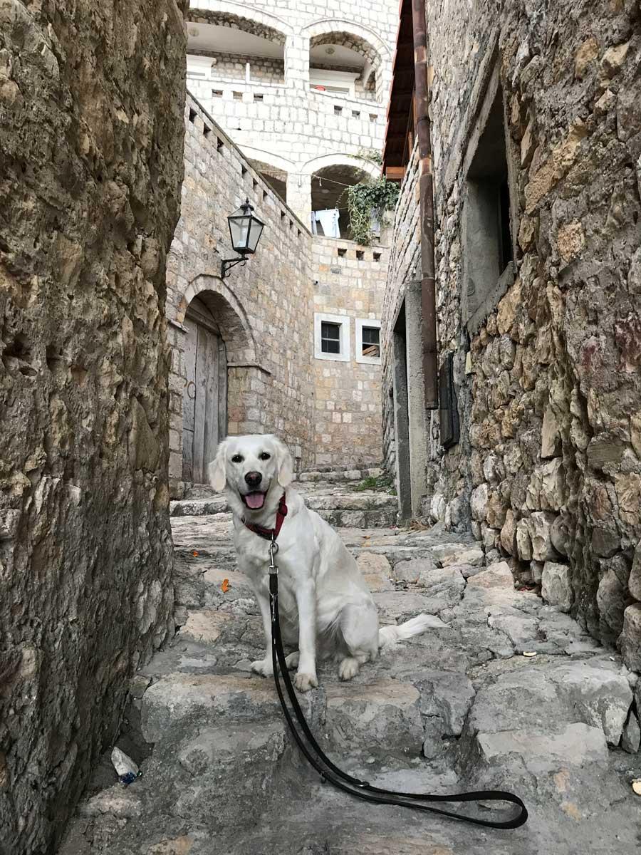 Beim sonntäglichen Morgenspaziergang in der mittelalterlichen Altstadt. In den verwinkelten Gassen sind wir komplett allein unterwegs.