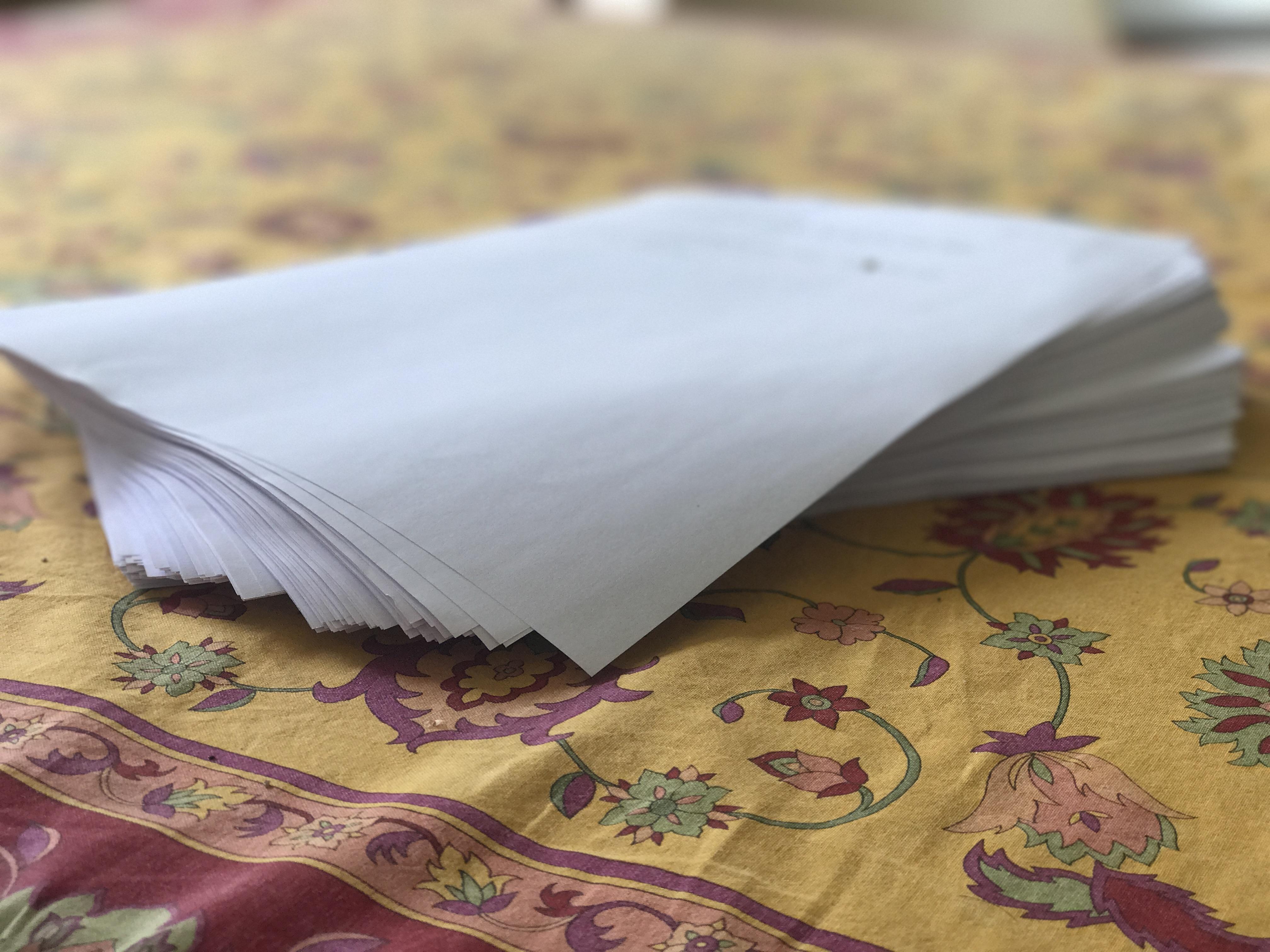 Das Buch zur Reise. Am 9. April fertig ausgedruckt auf den Tisch gelegt und mit meiner Nachbarin Inga begossen!