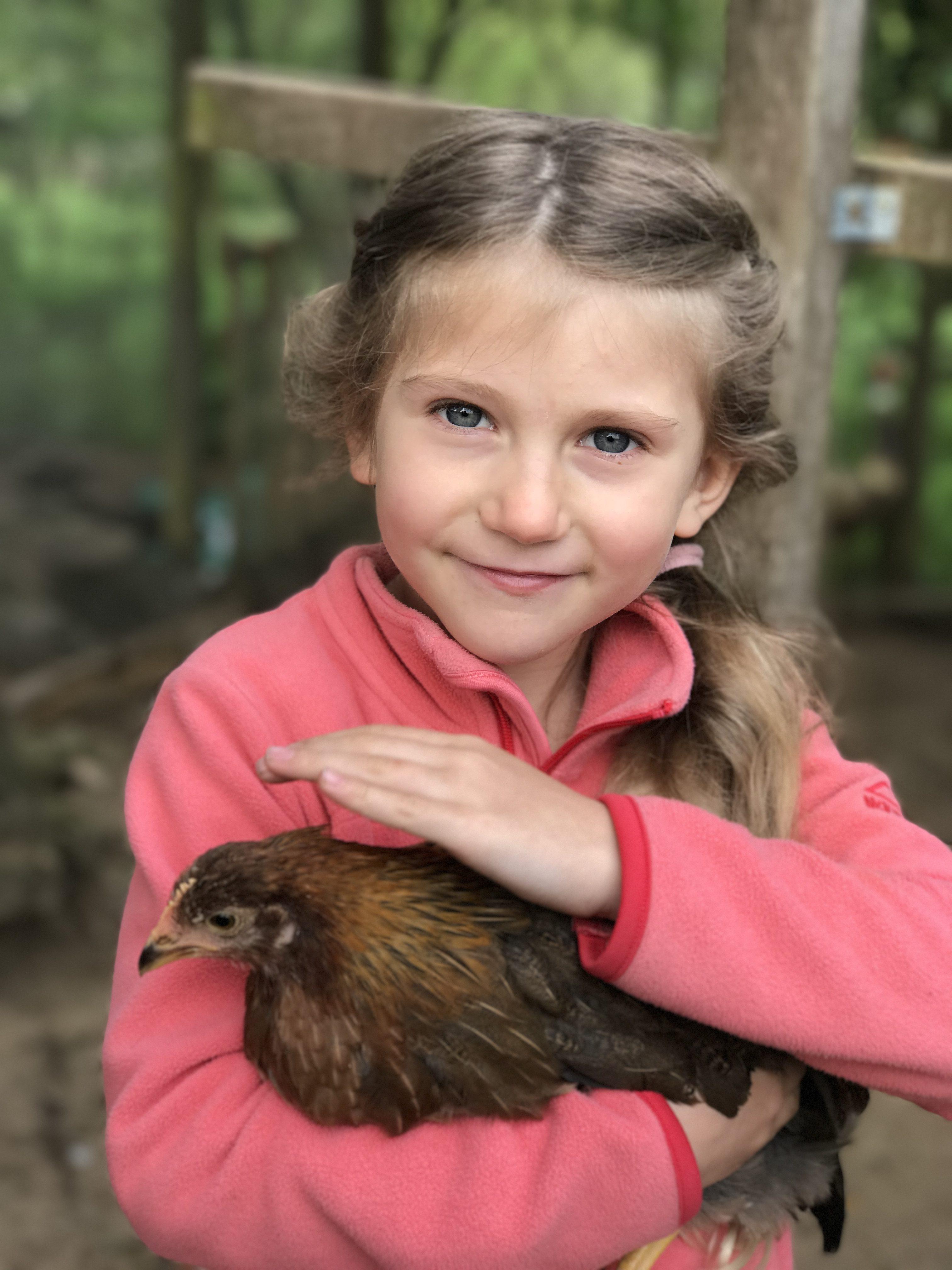 Hühner, wir haben Hühner. Seit anfang Mai dieses Jahres beehren uns Tante Trude, Hildegard, Madame, Gänseblümchen und Kokoschka (im Bild). Hier mit Livi, extra für die Hühner zurechtgemacht.